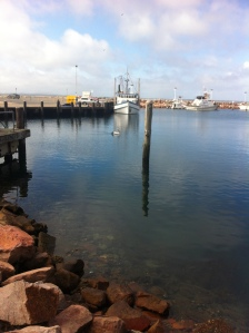 Nelson Bay Marina NSW